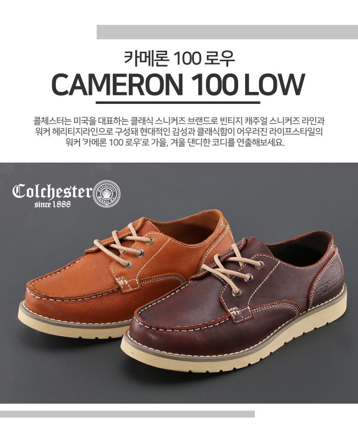 cameron100low.jpg